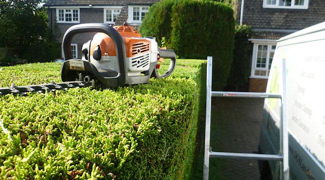 dgs landscapes garden maintenance landscaping services. Black Bedroom Furniture Sets. Home Design Ideas